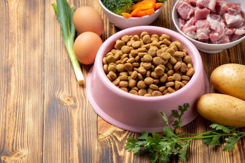 healthy fresh pet food
